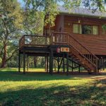 Self Catering Tree Houses